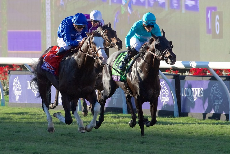 Talismanic wins the Breeders Cup Turf on November 4, 2017. Photo by Skip Dickstein.
