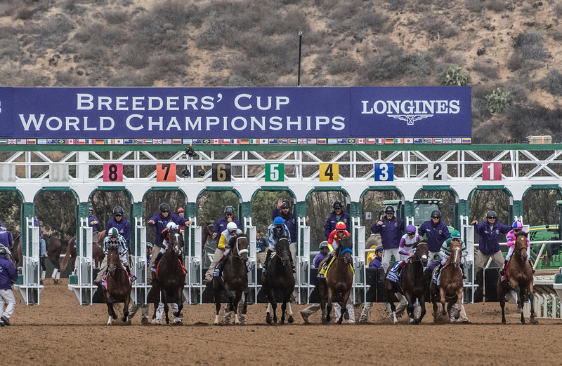 Forever Unbridled with jockey John Velazquez in the saddle wins the Breeders' Cup Distaff  worth $4M Friday Nov. 3, 2017 at Del Mar Race Track in San Diego, CA.   (Skip Dickstein/ Times Union)