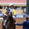 Forever Unbridled wins the 2017 Breeders' Cup Distaff. <br /> Dave Harmon