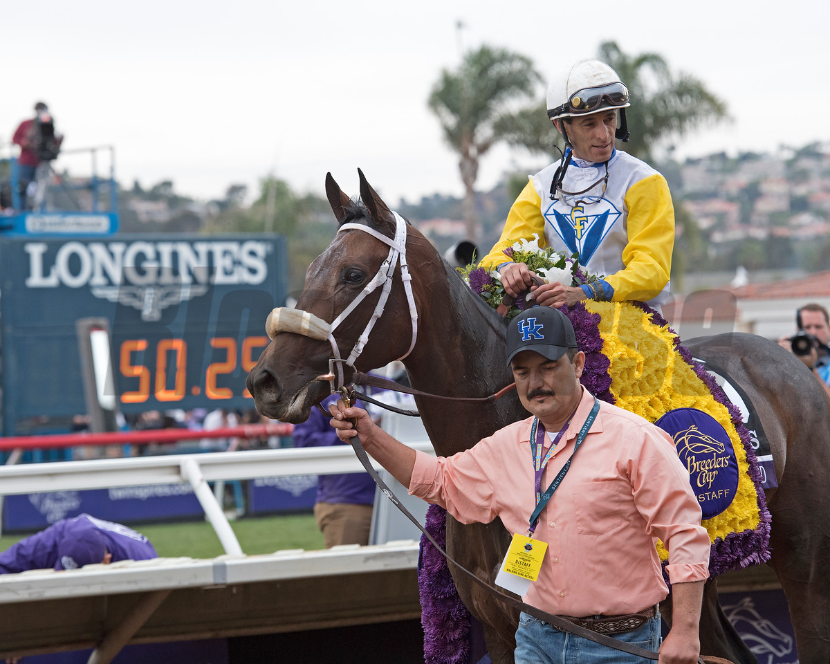 Forever Unbridled wins the Breeders Cup Distaff on November 3, 2017. Photo by Anne Eberhardt.