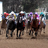 Breeders' Cup Distaff Final Turn Del Mar Chad B. Harmon