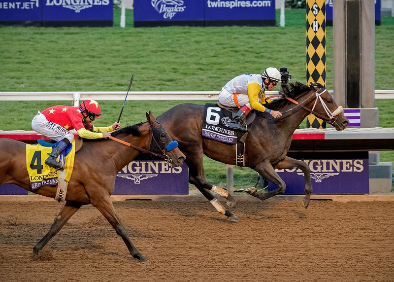 Forever Unbridled wins The Longines Breeders' Cup Distaff at Del Mar on November 3rd 2017, jockey John Velazquez up<br /> Nicole Marie Photo