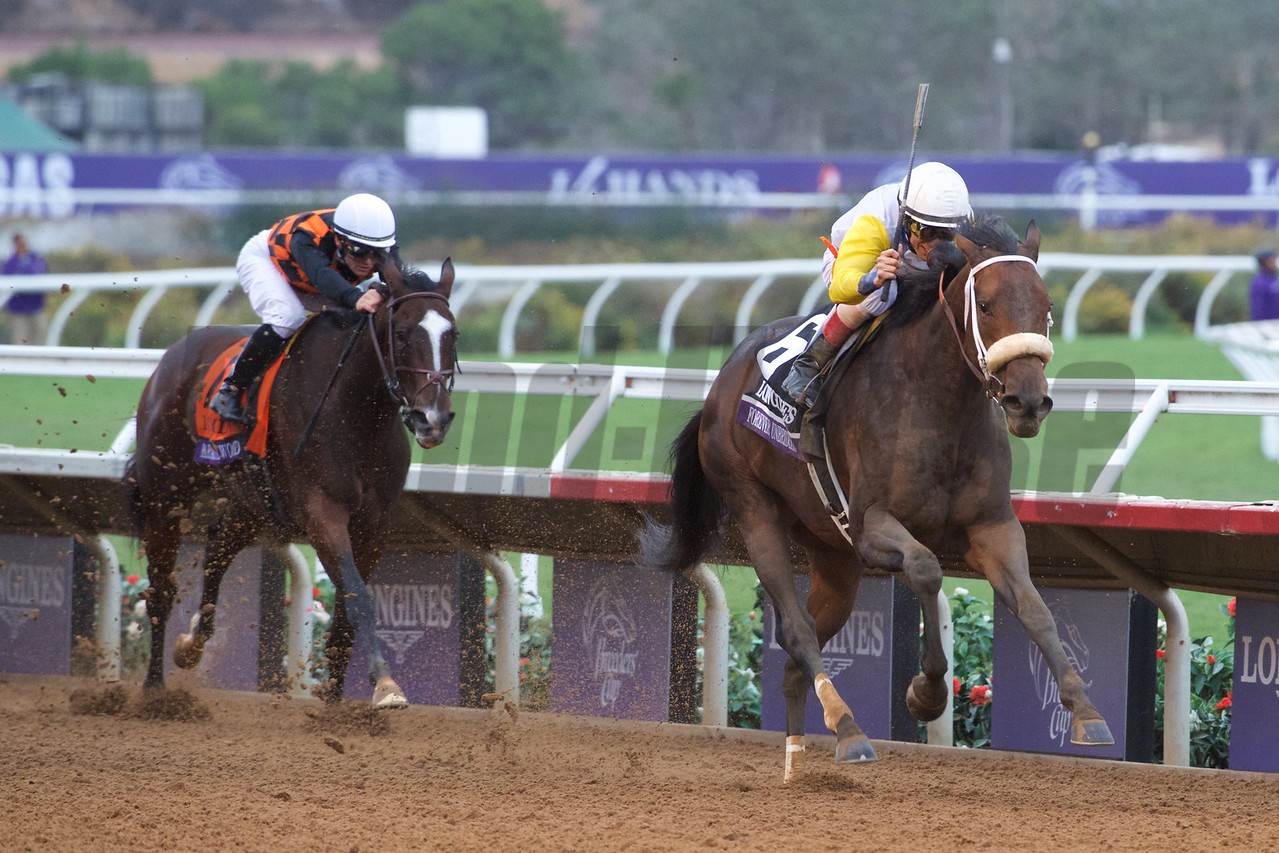 Forever Unbridled wins the Breeders Cup Distaff at Del mar on November 3, 2017. Photo by Skip Dickstein.