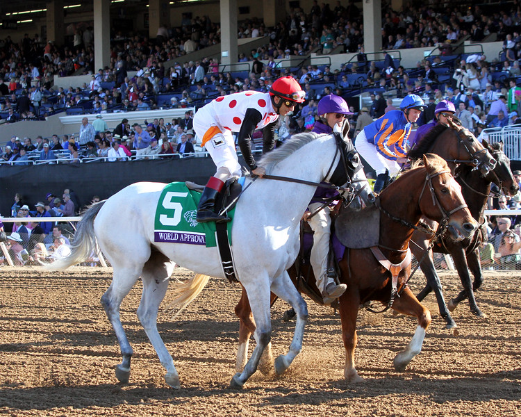 World Approval Breeders' Cup Mile Del Mar Chad B. Harmon