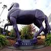 Purple Breeders' Cup Horse Chad B. Harmon