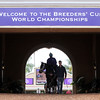 Breeders' Cup Morning Scene Chad B. Harmon