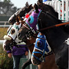 Del Mar Race 2 Start Chad B. Harmon