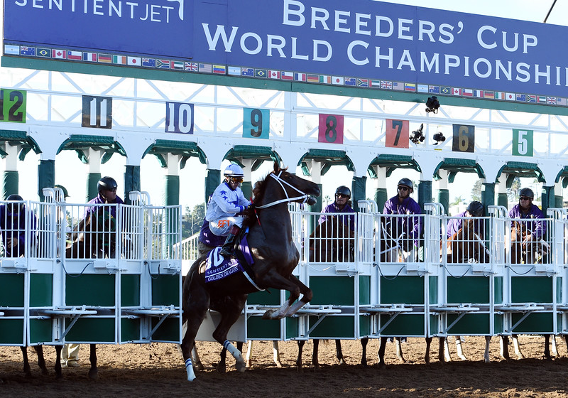 Golden Dragon breaks through the gate before the 2017 Breeders' Cup Juvenile<br /> Dave Harmon Photo