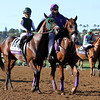 Bolt d'Oro Golden Magic Breeders' Cup Juvenile Del Mar Chad B. Harmon
