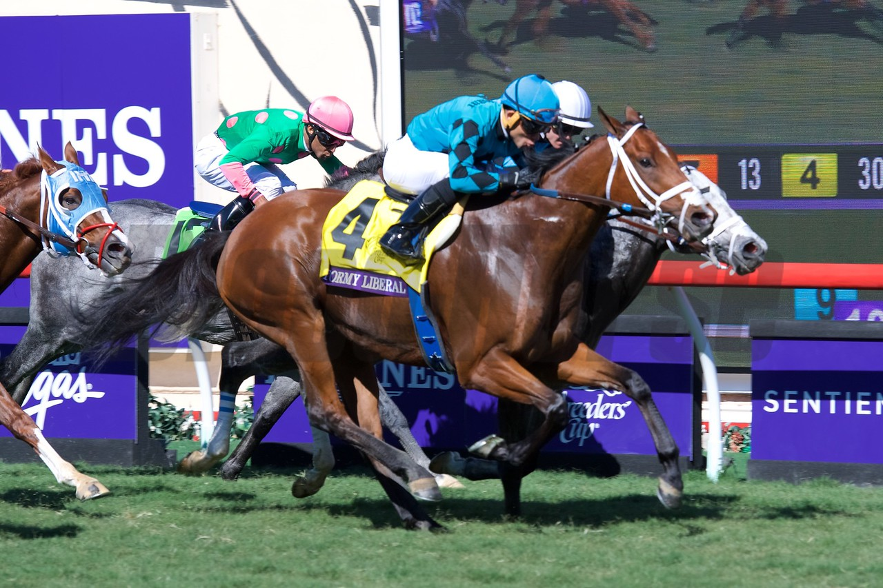 Stormy Liberal wins the Breeders Cup Turf Sprint on November 4, 2017. Photo by Anne Eberhardt