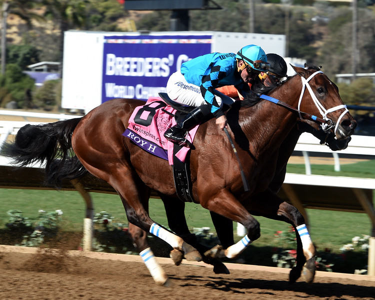 Roy H wins the 2017 Breeders' Cup Sprint (G1) <br /> Dave Harmon Photo