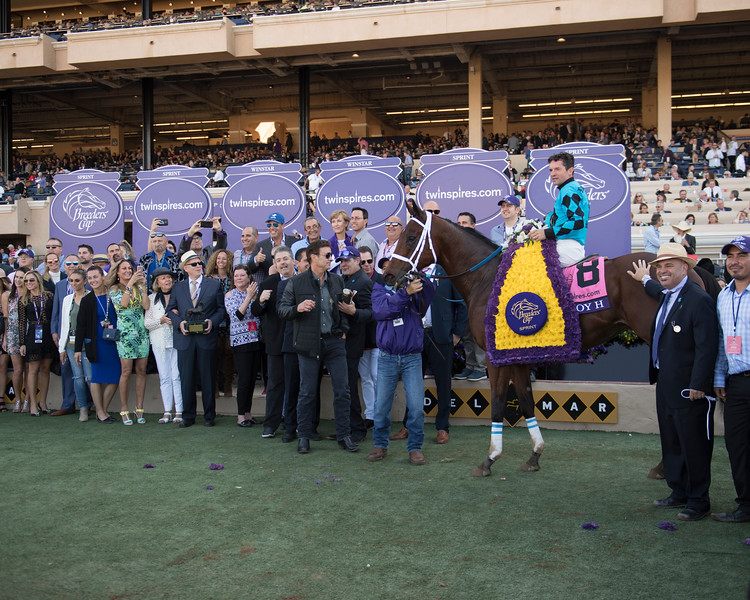 Roy H wins the Breeders Cup Sprint on November 4, 2017. Photo by Anne Eberhardt.