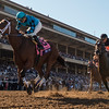 Roy H wins the 2017 Breeders' Cup Sprint (G1)<br /> Skip Dickstein Photo