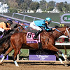 Roy H Breeders' Cup Sprint Del Mar Chad B. Harmon