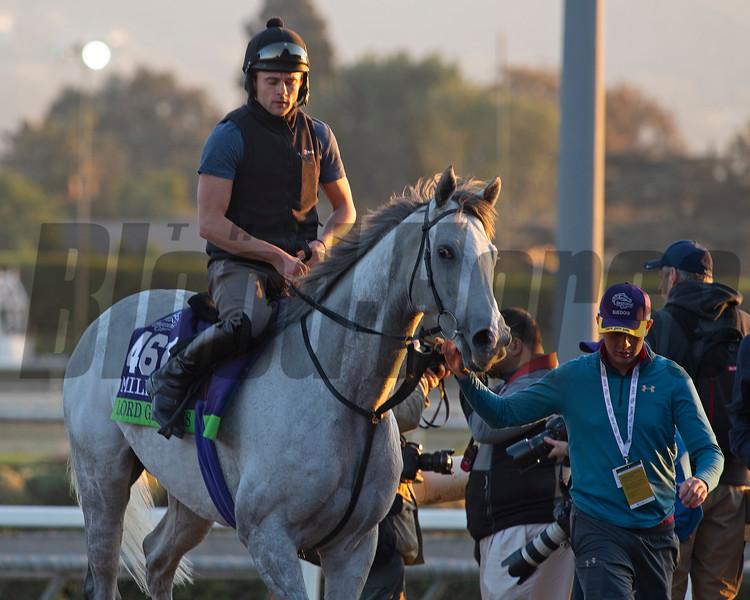 Lord Glitters<br /> at  Oct. 31, 2019 Santa Anita in Arcadia, CA.