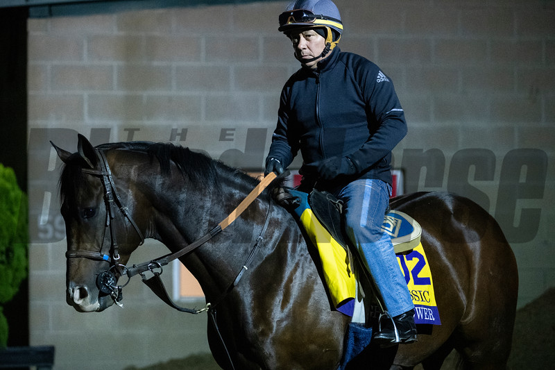 Higher Power out for a gallop at Santa Anita Race Course Wednesday October 30, 2019 in Arcadia, CA.  Photo by Skip Dickstein