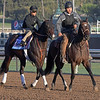 Wrecking Crew<br /> at  Oct. 29, 2019 Santa Anita in Arcadia, CA.