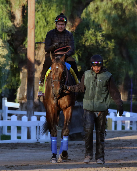 McKinzie at Santa Anita Park on October 31, 2019. Photo By: Chad B. Harmon