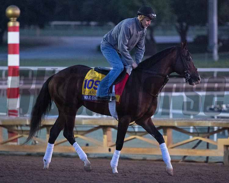 War of Will at  Oct. 30, 2019 Santa Anita in Arcadia, CA. Photo: Anne M. Eberhardt