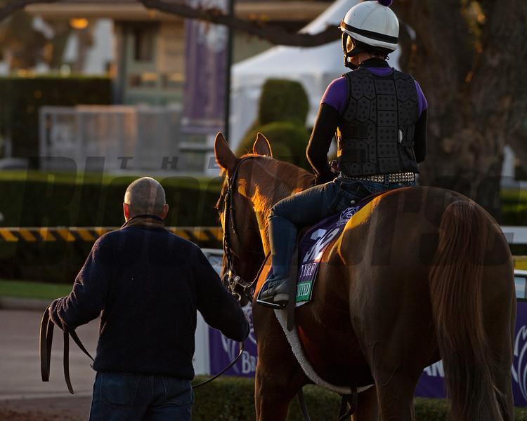 United<br /> Horses and scenes at  Oct. 26, 2019 Santa Anita in Arcadia, CA.