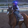 Improbable<br /> at  Oct. 27, 2019 Santa Anita in Arcadia, CA.