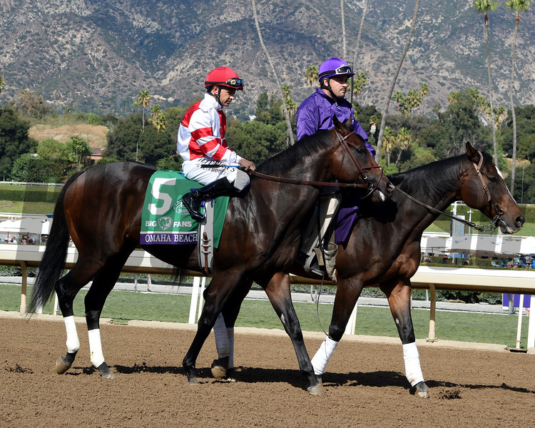 Spun to Run wins the 2019 Big Ass Fans Breeders' Cup Dirt Mile<br /> Photo: Dave W. Harmon