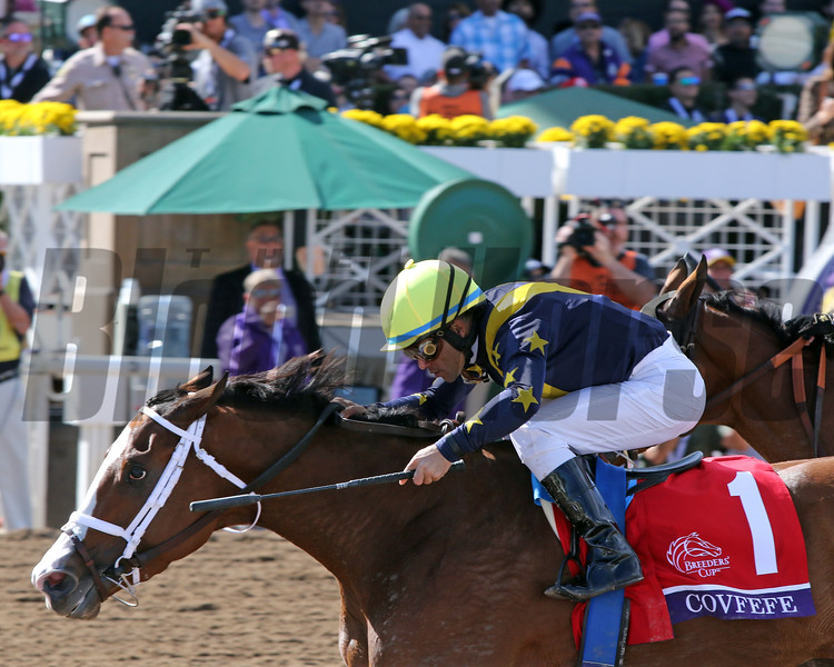 Covfefe (#1) with Joel Rosario win the Breeders' Cup Filly & Mare Sprint (GI) at Santa Anita Park on November 2, 2019. Photo By: Chad B. Harmon