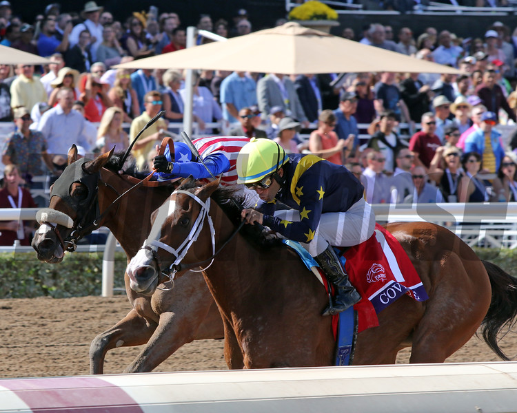 Covfefe (#1) with Joel Rosario win the Breeders' Cup Filly & Mare Sprint (GI) over Bellafina (#6) with Flavien Prat at Santa Anita Park on November 2, 2019. Photo By: Chad B. Harmon