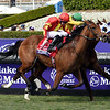 Iridessa and Wayne Lordan win the Breeders' Cup Maker's Mark Filly and Mare Turf (G1) on Nov. 2, 2019 Santa Anita in Arcadia, Ca.  <br /> Dave W. Harmon Photo