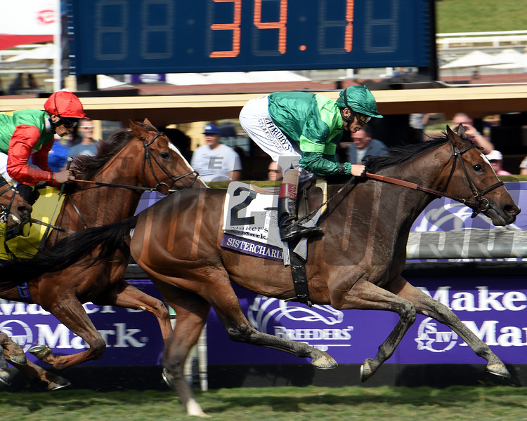 Sistercharlie during the running of the 2019 Breeders' Cup Filly & Mare Turf<br /> Dave W. Harmon Photo