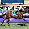 Four Wheel Drive wins the 2019 Breeders' Cup Juvenile Turf Sprint<br /> Dave W. Harmon