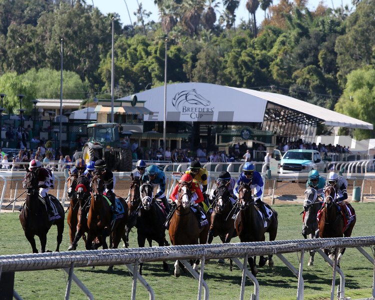 Breeders' Cup Juvenile Turf start at Santa Anita Park on November 1, 2019. Photo By: Chad B. Harmon