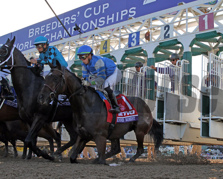 Dennis' Moment stumbles to his knees just after the start of the Breeders' Cup Juvenile with Irad Ortiz Jr. at Santa Anita on November 1, 2019. Photo By: Chad B. Harmon