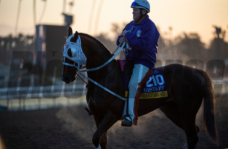 Steam comes from Street Dance after a gallop with trainer Larry Jones aboard at Santa Anita Race Course Wednesday October 30, 2019 in Arcadia, CA.  Photo by Skip Dickstein