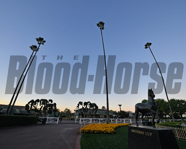 Ecorche statue, scene<br /> Horses and scenes at  Oct. 26, 2019 Santa Anita in Arcadia, CA.
