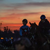 A brilliant sunrise this morning at Santa Anita Race Course Wednesday October 30, 2019 in Arcadia, CA.  Photo by Skip Dickstein