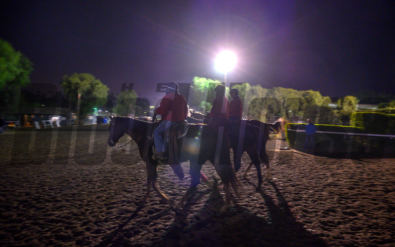Very early morning as the outriders take a short break as the main track closes for maintenance at Santa Anita Race Course Wednesday October 30, 2019 in Arcadia, CA.  Photo by Skip Dickstein