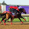 Pingxiang (inside) and Jasper Prince work.<br /> Breeders' Cup horses at Keeneland in Lexington, Ky. on November 4, 2020.