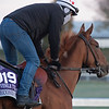 Second of July<br /> Breeders' Cup horses at Keeneland in Lexington, Ky. on November 2, 2020.