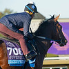 Jackie's Warrior<br /> Breeders' Cup horses at Keeneland in Lexington, Ky. on November 4, 2020.