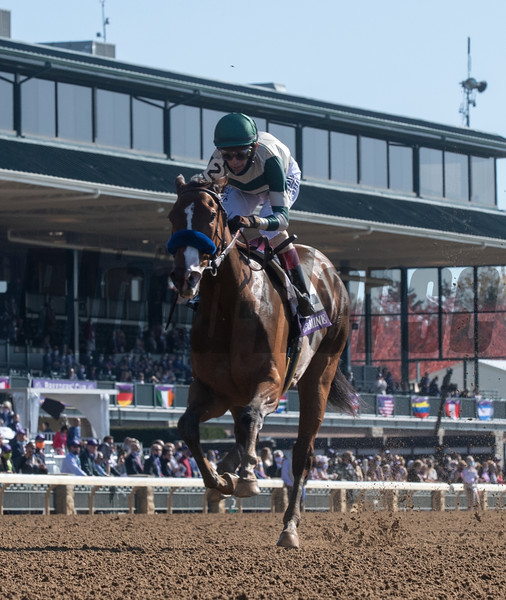 Gamine with jockey John Velazquez wins the $1M Filly and Mare Sprint at Keeneland Race Course Friday Nov. 6 2020 in Lexington, KY.  Photo by Skip Dickstein