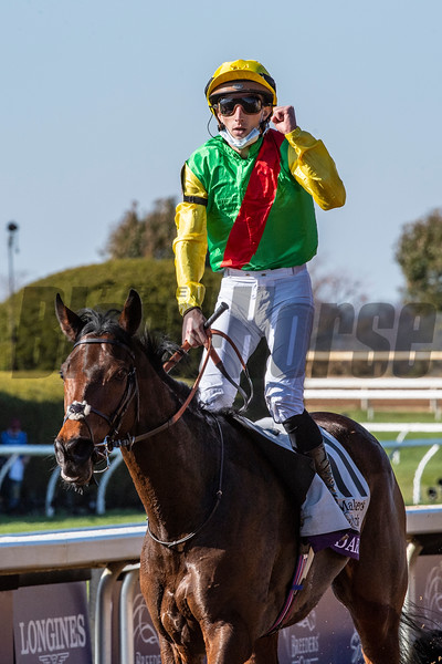 Audarya ridden by Pierre-Charles Boudot wins the $2M Breeders' Cup Filly and Mare Mile G1 at Keeneland Race Course Saturday Nov. 7,  2020 in Lexington, KY.  Photo by Skip Dickstein