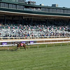 Horses race in the Breeders' Cup Filly and Mare Turf at Keeneland in Lexington, Ky. on Nov. 7, 2020.