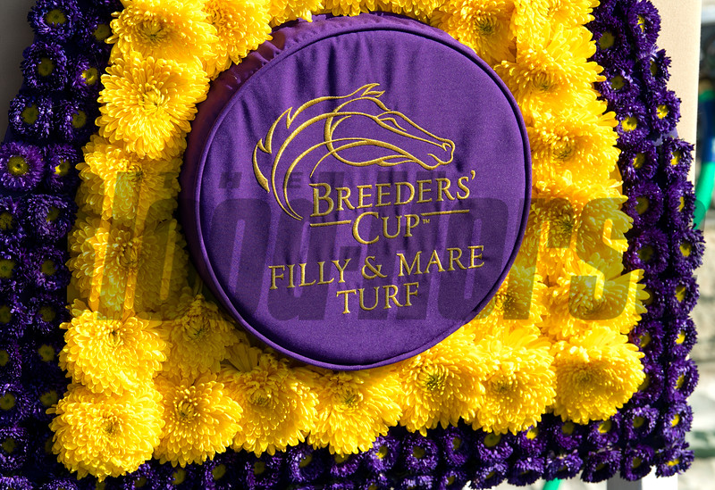 Flowers at Keeneland in Lexington, Ky. on Nov. 7, 2020.