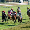 Glass Slippers with Tom Eaves wins the Turf Sprint at Keeneland in Lexington, Ky. on Nov. 7, 2020.