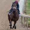 City of Light puts in fans work Sunday Oct. 28, 2018 before the Breeders' Cup at Churchill Downs in Louisville, KY Photo by Skip Dickstein