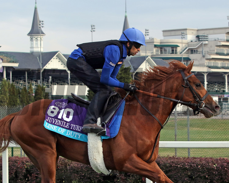 Line of Duty Breeders' Cup Churchill Downs Chad B. Harmon