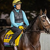 Yoshida on track at Churchill Downs on Breeders' Cup week Monday October 29, 2018 in Louisville, KY.  Photo by Skip Dickstein