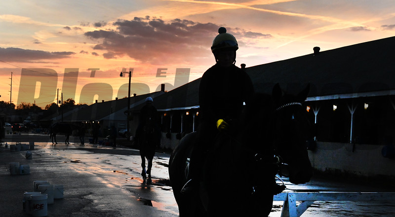 Beautiful sky during morning exercise Tuesday Oct. 30, 2018 at Churchill Downs in preparation for the 2018 Breeders' Cup in Louisville, KY.  Photo by Skip Dickstein