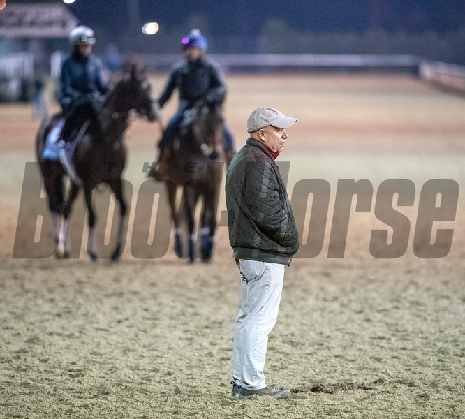 Mark Casse watches his charges during morning exercise Tuesday Oct. 30, 2018 at Churchill Downs in preparation for the 2018 Breeders' Cup in Louisville, KY.  Photo by Skip Dickstein